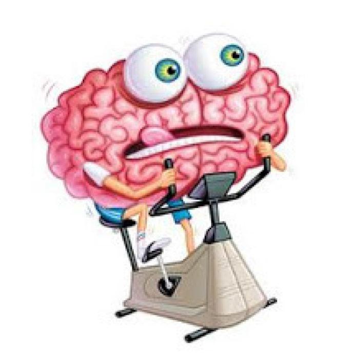 Atelier seniors : gymnastique cérébrale