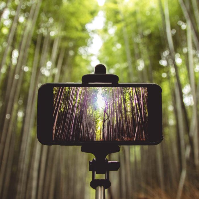 Atelier numérique – Chasse au trésor photographique